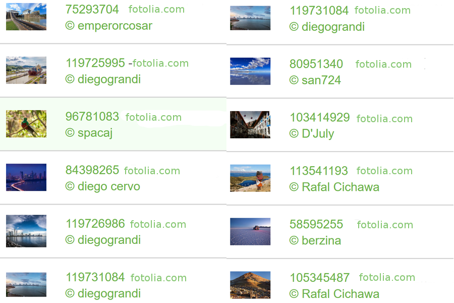 copyright fotolia7